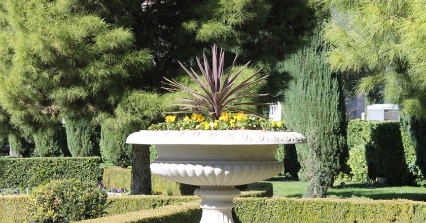Eine Hecke kann Ihren Garten aufwerten