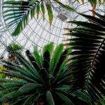 Auswahl der richtigen künstlichen Hängepflanzen